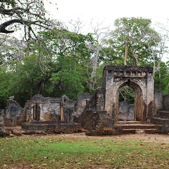 Gede Ruins & Arabuko Forest