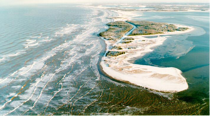 discover Robinson Island